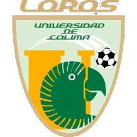 Loros Universidad